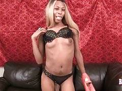 Pretty Ebony She-Male Poses For You 2